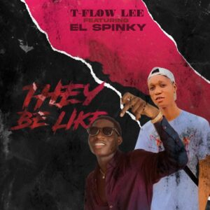 Music: Tflow Lee Ft. El Spinky - They Be Like (prod by Lemxxy)
